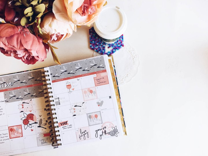 Planner Monthly Review: June Day Designer Flagship Pages